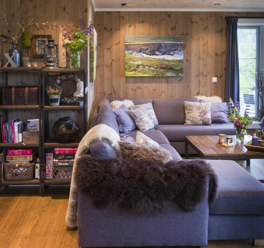 EGNE BILDER: Over sofakroken henger bilder som Odd-Arve har tatt ute i naturen. Fargene går igjen i interiøret og skaper en fin helhet. – Det gjør seg godt med litt farger når basen er av treverk, tipser Linda.