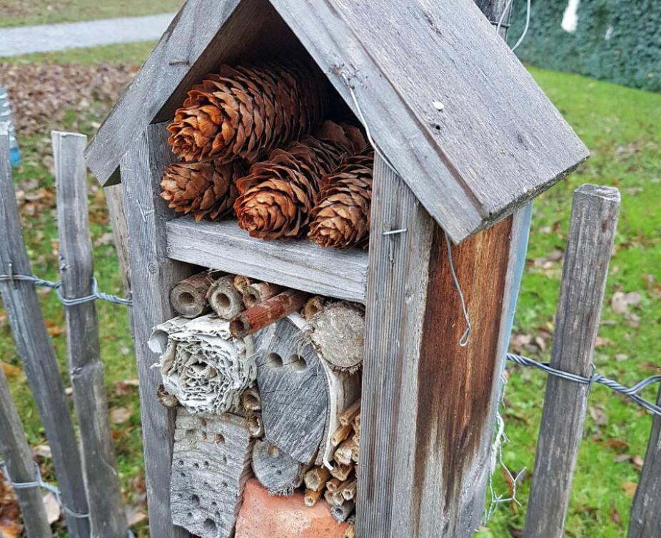 ROM TIL LEIE: Med et insekthotell i hagen eller på terrassen kan du hjelpe bier og humler med å finne boplass.