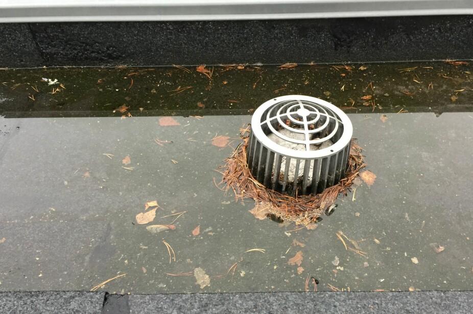 TETT: Huseiere med flate tak må være nøye med vedlikeholdet.