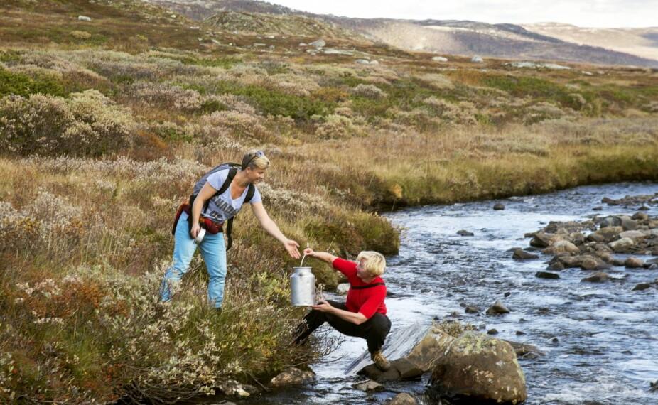 VANNKILDEN: Fjellbekken der de henter vann ligger ti minutter fra hytta.