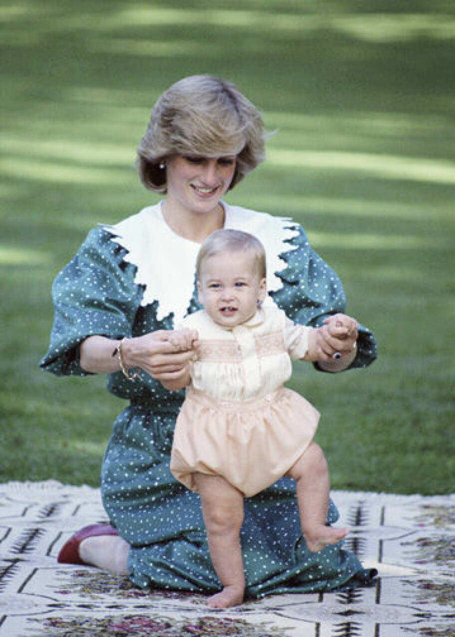 I 1983 vil William gjerne står på egne ben.