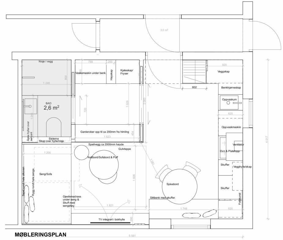 PLANTEGNINGEN: Familien fikk tegnet denne møbleringsplanen for kjellere.n