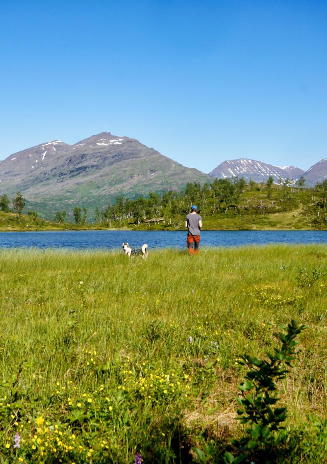 Sommeridyll i Indre Troms - Villmarksliv