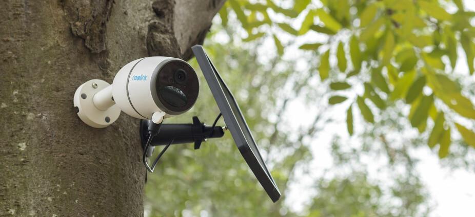 SOLCELLEPANEL: Noen av kameratypene kan drives av tilhørende solcellepaneler. Da slipper du å tenke på strømforsyning eller bytte av batterier.