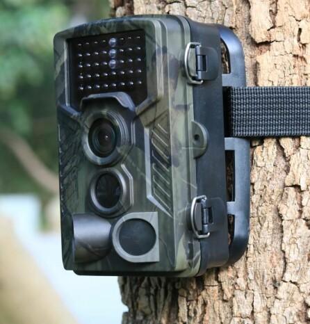 VILTKAMERA: Disse er egentlig beregnet for å filme dyr, men kan også brukes til overvåkning av hytta.