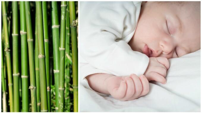 48416d03 Bambus er blitt løftet fram som et vidundermateriale, men det stemmer nok  ikke med virkeligheten