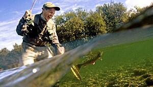 Golf og fiske i Trysil