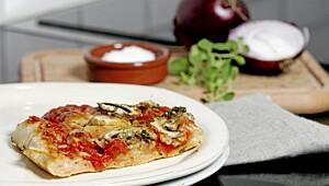 Grisegod pizza