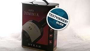 Dona Dominga Syrah 2010