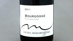 Muzard Bourgogne 2011