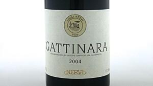 Nervi Gattinara 2004