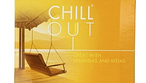 Chill Out Chardonnay 2008