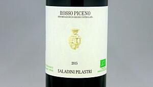 Saladini Pilastri Rosso Piceno 2015