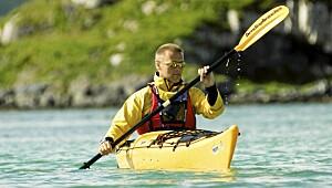 Havkajakk og sjøsafari i Ålesund