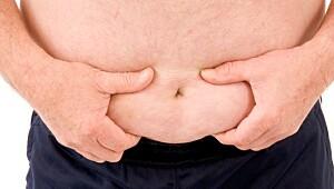 Insulinresistens og det metabolske syndrom