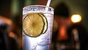Hemmeligheten bak en perfekt gin and tonic