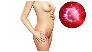 Uke 2: Symptomer på eggløsning