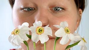 – Start pollenvaksineringen nå