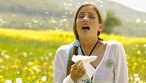Dette hjelper mot pollenallergi