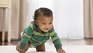 Når babyen er 11 måneder